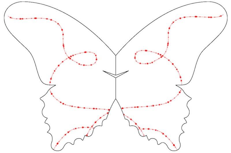 sommerfuglbordkort_02_42__800x600_.jpg