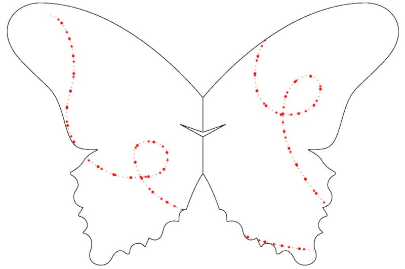 sommerfuglbordkort_02_43__800x600_.jpg