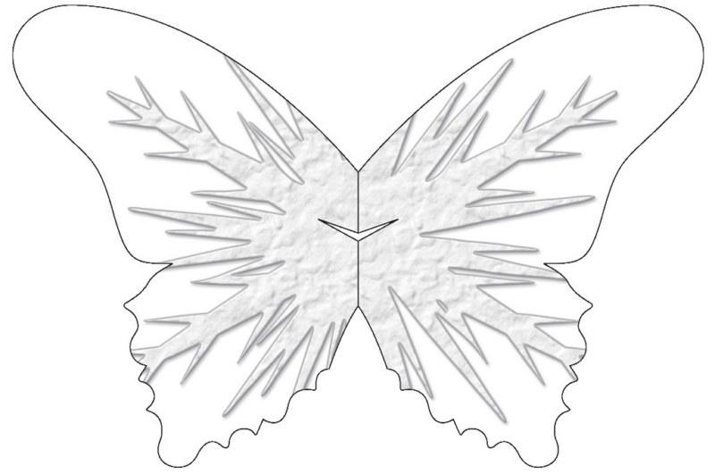sommerfuglbordkort_02_48__800x600_.jpg